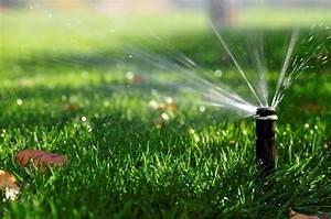 Arrosage Automatique Pelouse : jardin pelouses haies arrosage de la pelouse faites des ~ Melissatoandfro.com Idées de Décoration
