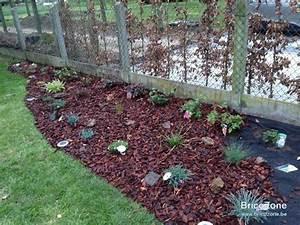 Parterre De Plante : parterre et plantes ~ Melissatoandfro.com Idées de Décoration
