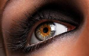 Close-up brown eyes macro eye wallpaper | 2560x1600 ...