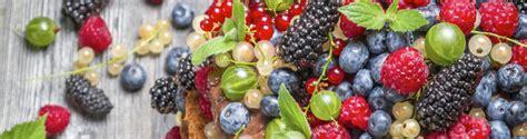 ansia e alimentazione ansia depressione e disturbi dell umore anche la dieta