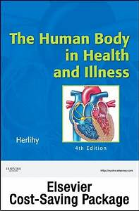 Anatomy  U0026 Physiology Online For The Human Body In Health
