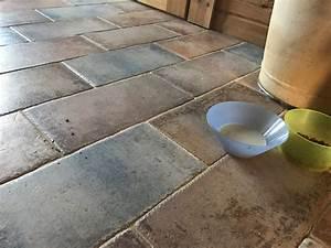 Staubsauger Für Fliesen : staubsauger roboter testbericht katzenfutter tierfutter fliesen ~ Frokenaadalensverden.com Haus und Dekorationen