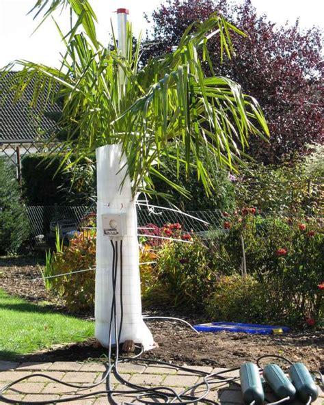 Garten Palme Winterfest Machen by Trachy Ph 246 Nix Und Musaschutz Seite 1 Winterschutz