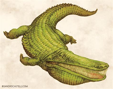 Dinosaurs images Stomatosuchus wallpaper and background ...
