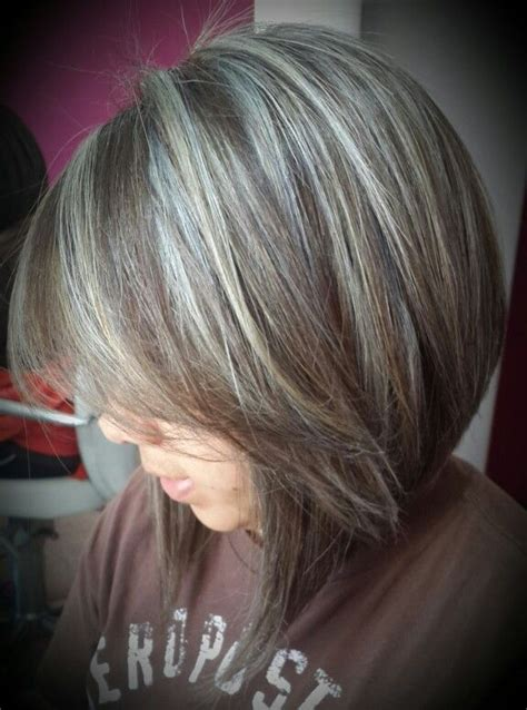 highlights  cover gray hair gallery  hair color