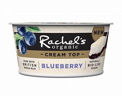 Cream Yogurts Rachel Organic Yogurt 150g Blueberry