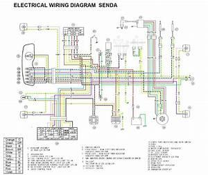 Tvs Apache Wiring Diagram  U2013 Volovets Info