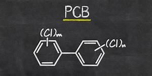 Machen Sonnenblumenkerne Fett : pcb kann die testosteronspiegel senken und fett machen ~ Lizthompson.info Haus und Dekorationen