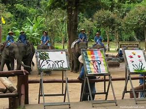 Elephants Painting at the Thai Elephant Conservation Center