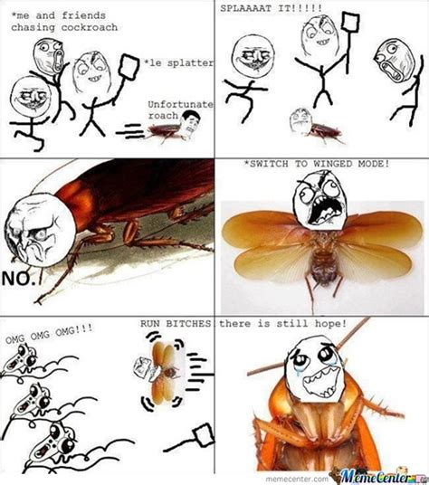 Flying Cockroach Meme - cockroach memes best collection of funny cockroach pictures