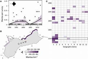 Infrequent  Increasingly Aggregated Manta Ray Observations