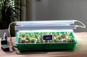 Indoor Gewächshaus Mit Beleuchtung : zimmergew chshaus aus glas mit beleuchtung selber bauen ~ Watch28wear.com Haus und Dekorationen