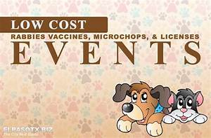 low cost pet rabies vaccines microchips licensing