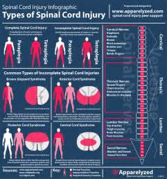 Explaining the Types of Spinal Cord Injuries ... Spinal Cord Injuries