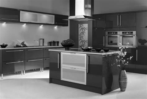 black shiny kitchen cabinets mirror finishes on kitchen cabinets appeal to homeowners 4743