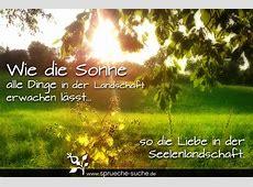 Frühling Liebe Sprüche Wie die Sonne alle Dinge in der
