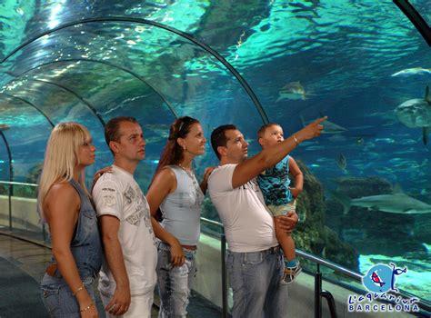 aquarium de barcelone adresse excursion aquarium de barcelone