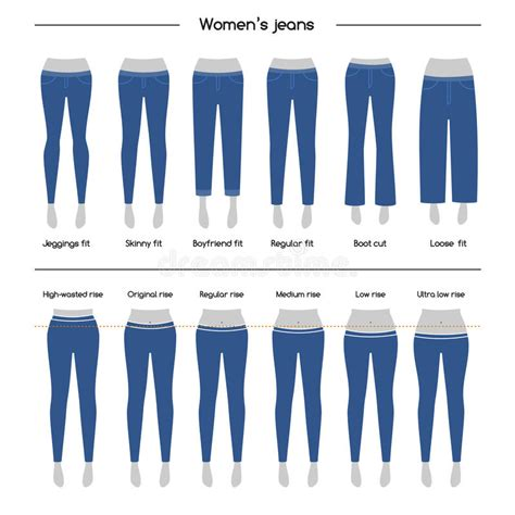 denim trouser collection of womens stock vector illustration of