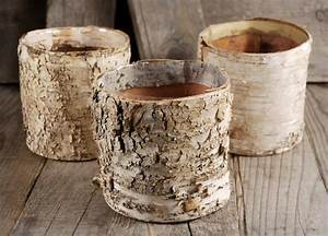Birch, Bark, Planter, 4, 75, U0026quot, Pots, W, Plastic, Liner