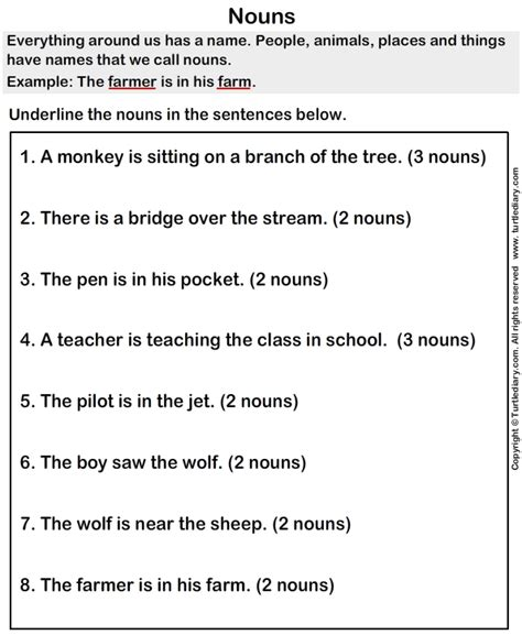 finding nouns worksheet turtle diary