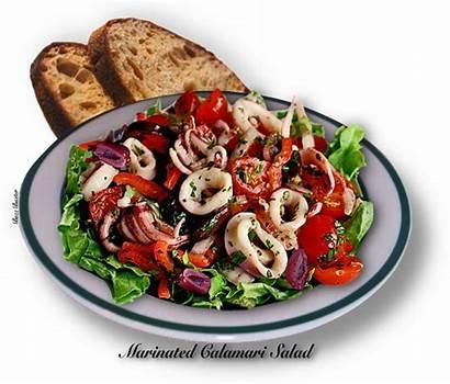 Calamari Salad Marinated Butter Thegutsygourmet Bed Lettuce