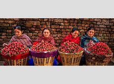 Nepali New Year 2019 and 2020 — Public Holidays Nepal