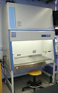 Laminar Flow Hood Used To Prevent Contamination Of