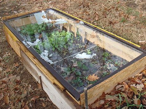 cold frames for gardening cold frame yes no maybe looking out the window