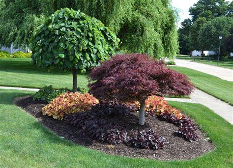 اهمیت محوطه سازی با درخت در حیاط خلوت-سایبان پارکینگ|خودرو
