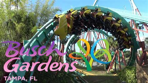 bush gardens florida the roller coasters of busch gardens ta