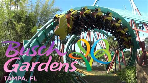 The Roller Coasters Of Busch Gardens Tampa Youtube