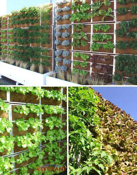 Edible Vertical Garden by Reviplant Edible Green Wall Great Garden Ideas Garden