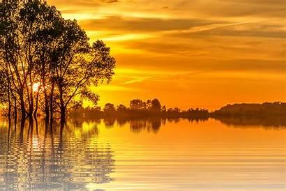 Sunset Nature Sun Tree Isolated Holiday Scenic