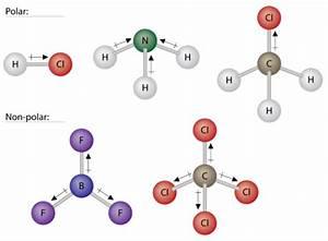 Which Diagram Best Represents A Polar Molecule