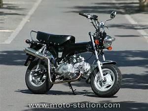 Petite Moto Honda : skyteam dax 125 la r plique qui fait mouche moto revue ~ Mglfilm.com Idées de Décoration