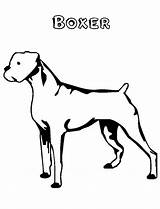 Boxer Coloring Dog Pages sketch template