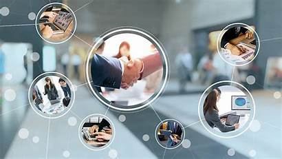 Business Development Fund Programs Policies Queensland Businesses