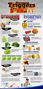 Hormone Triggers That Burn And Store Fat Food Healthy Weight Loss Health Healthy Food Healthy