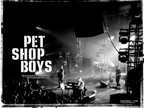 pet shop boys the best my corner pet shop boys