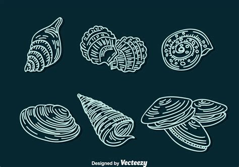 shell line icons vector download free vector art stock