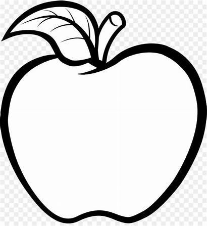 Apple Line Clipart Drawing Vector Outline Apel