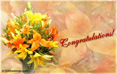 bouquet  warm wishes  congratulations ecards greeting cards
