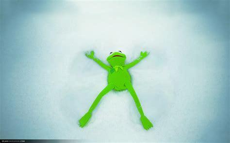 kermit  frog wallpaper