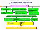 Основные принципы немедикаментозного лечения гипертонической болезни