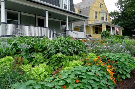 edible landscaping design less noise more green edible landscape project garden photos