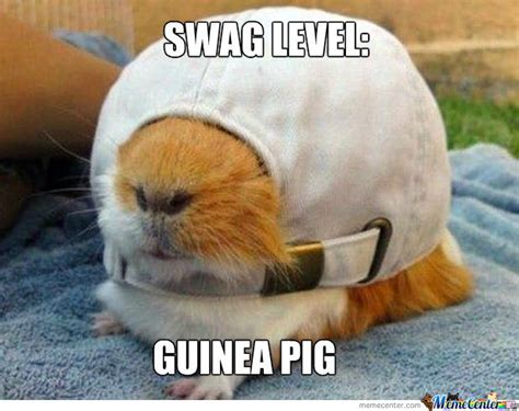 Immeasurable Levels Of swag By Versalina Meme Center