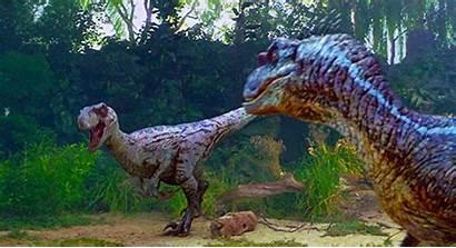 Velociraptor Jurassic Park Velociraptors Dead Eggs Want