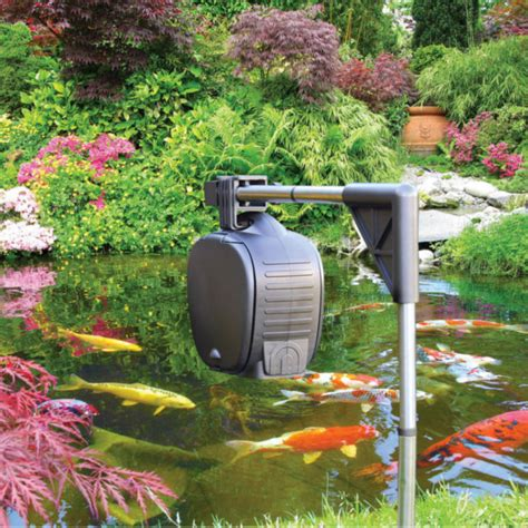 hozelock automatic fish feeder   spring fish food