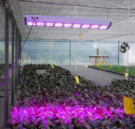 grow lights at lowes plant grow lights lowes 810w led grow light hydroponic