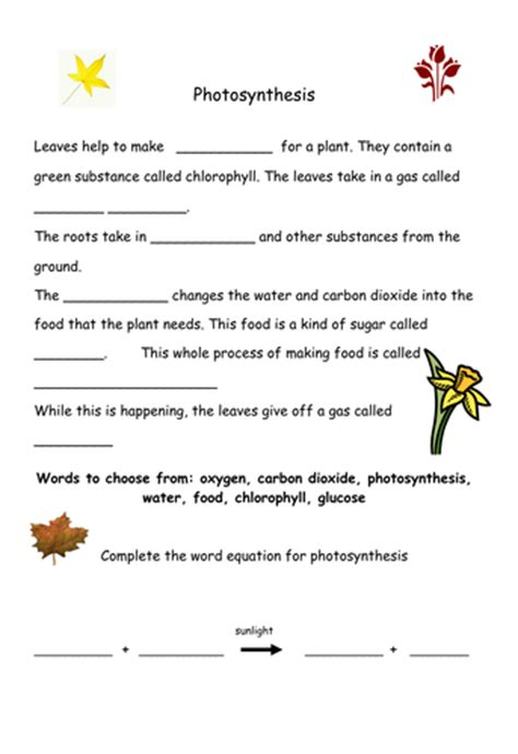 Photosynthesis Worksheet By Hazcard  Uk Teaching Resources Tes